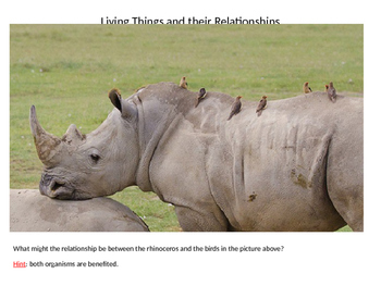 Living Things and their Relationships