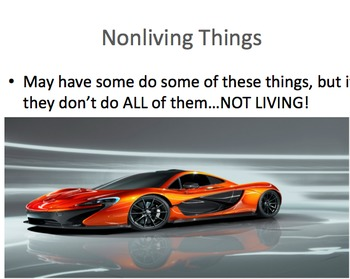 Living V. NonLiving Things