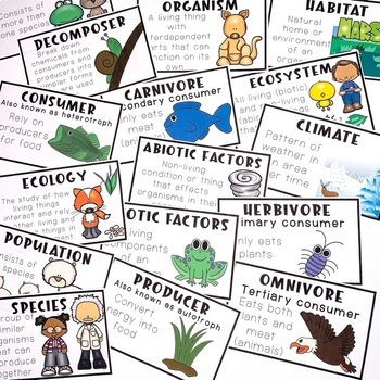 Ecology - Living Vs. Nonliving things