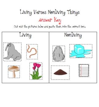 Living Vs Nonliving Sort