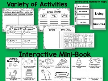 Living and Non Living Posters and Activities