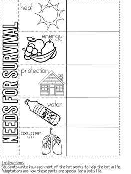 Living and Non-Living Science Interactive Activities