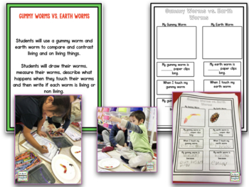 Living and Non-Living Research Project