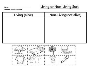 Living and Non- Living Sort