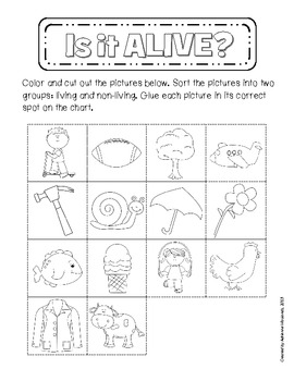 {Freebie!} Living and Non-Living Sorting Activity