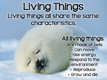 Living Things PowerPoint