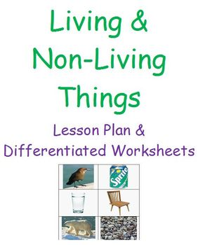 Living and Non-Living Things (Lesson Plan & Differentiated Worksheets)