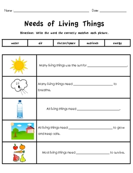 living and non living things packet by the whole wheat class tpt. Black Bedroom Furniture Sets. Home Design Ideas