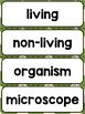 Living and Non-Living Things Word Wall