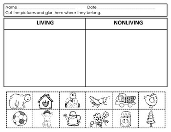 Living and Non-Living Unit  Activities