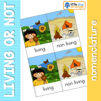 Living and Non Living nomenclature cards