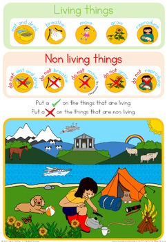 Living and Non Living  observation sheet
