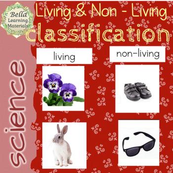 Montessori Living and Non-living Classification