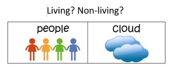 Living and Non-living Sort