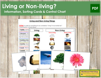 Living and Non-living: Sorting Cards & Chart