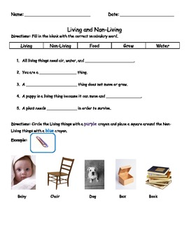 living and non living test assessment worksheet by onestopteachingresources. Black Bedroom Furniture Sets. Home Design Ideas