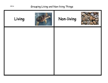 Living and Non-living Unit for K