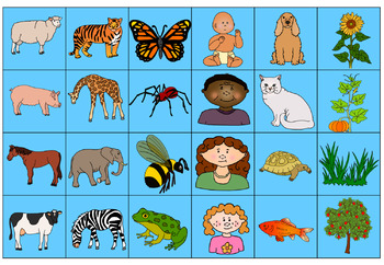 Living and Non living  sort worksheets
