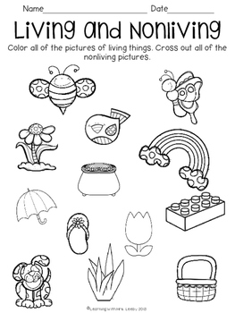 Living and nonliving germinating seeds freebie by mrs for Living and nonliving things coloring pages