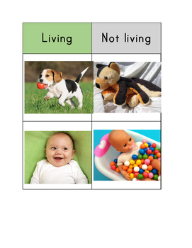 Living and Nonliving Match and Sort