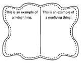 Living and Nonliving Thing Picture