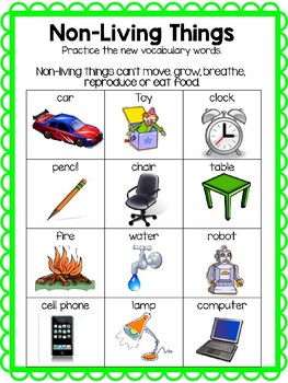 Living and Nonliving Vocabulary!