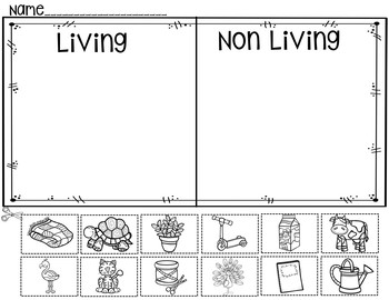 Living or non living a pocket chart activity and for Living and nonliving things coloring pages