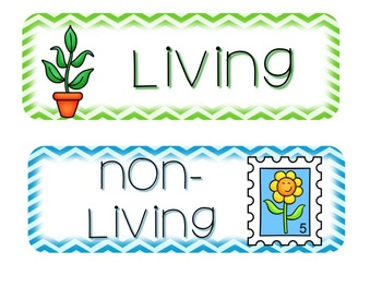 Living or Non-Living--A Science Mini Unit