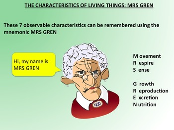 Living or Non Living? Characteristics of Living Things PowerPoint and Activities