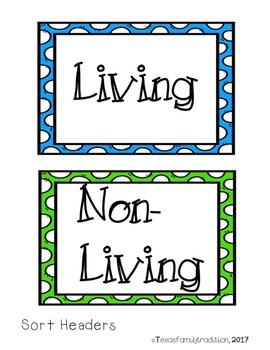 Living or Non-Living Sort