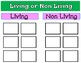 Living or Non Living Sorting Center