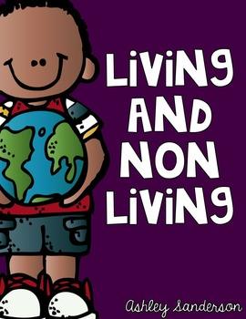 Living or Non Living Mini Unit
