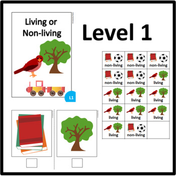 Living or Non-living ADAPTED BOOK including matching cards and assessment