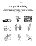 Living or Nonliving Worksheet