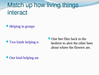 Living thing interaction - Food Chain and Food Web powerpoint
