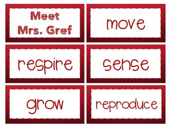 Living vs. Non-Living - Meet Mrs. Gref