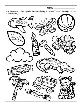 Living vs non living coloring pages coloring pages for Living and nonliving things coloring pages