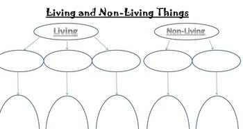 Living vs Non Living Worksheet
