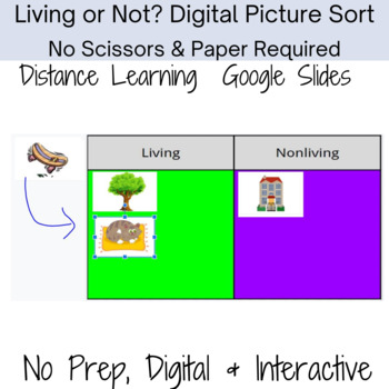 Living vs Nonliving Digital Picture and Word Sort