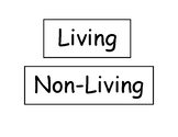 Living vs Nonliving Flash Cards
