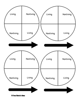 Living vs Nonliving Game
