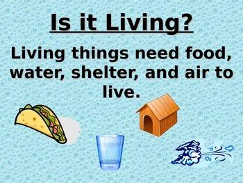 Living vs. Nonliving Lesson