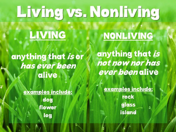 Living vs. Nonliving PowerPoint and Student Notes Page