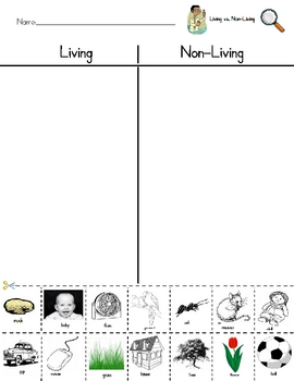 Worksheets Living Vs Nonliving Worksheet living vs nonliving sort w by julie aiken teachers pay worksheet
