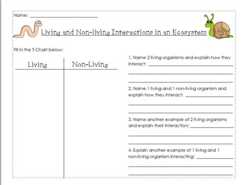 Living vs Nonliving T-Chart and Interactions Cart Sort