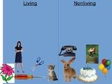 Living vs. Nonliving Things