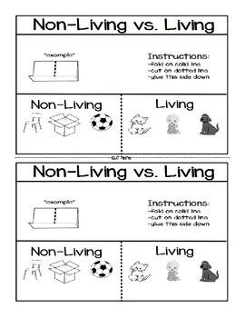 Living vs.Non-Living