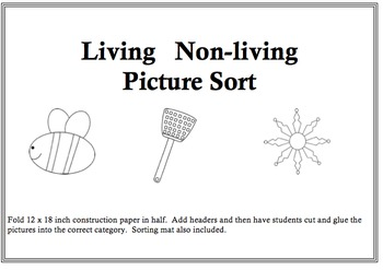 Living/Nonliving Picture Sort