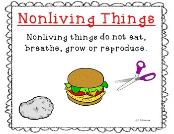 Living/Nonliving Posters