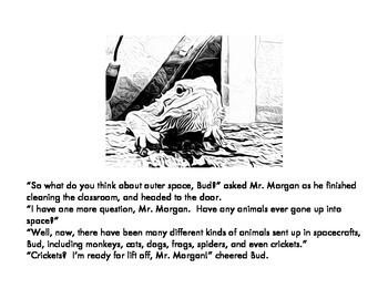 Lizard Science Bundle